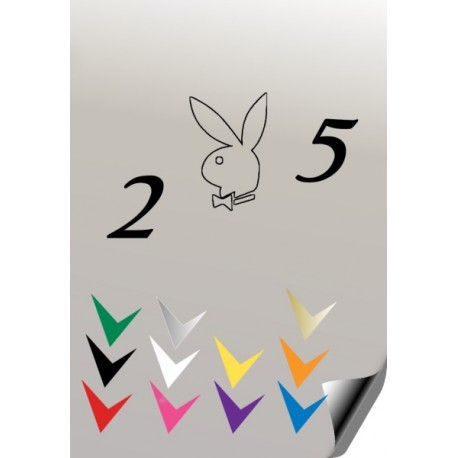 Autocollant 205 PLAYBOY 2 - StickCompteur création stickers personnalisés