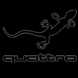 AUDI STICKERS 006* - StickCompteur création stickers personnalisés