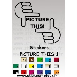 PICTURE THIS 1