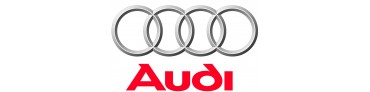 DOWN & OUT AUDI